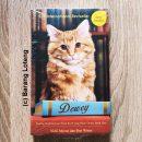 Dewey Kucing Perpustakaan Kota Kecil yang Bikin Dunia Jatuh Hati